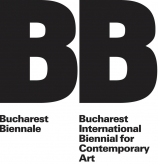 Voluntar la Bucharest Biennale 6